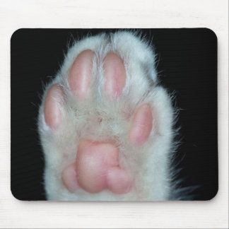 cat paw mouse pads