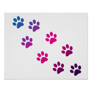 Cat Paws Blue Purple Pink Poster