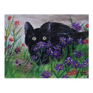 Cat Peeking Postcard