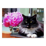 Cat & Peonies Card