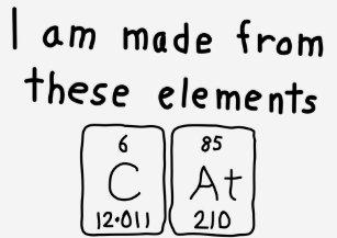 Cat name t shirts shirt designs zazzle cat periodic table name shirt urtaz Image collections