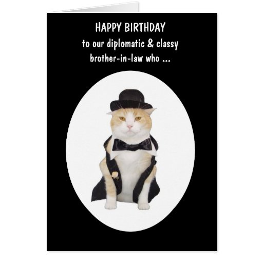 Funny Th Male Birthday Cards ~ Cat person funny male birthday greeting cards zazzle