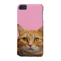 Cat pet animal cute photography iPod touch 5G cover
