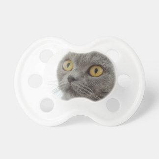 Cat Pet Animal Grumpy Frown Peace Love Destiny Pacifier