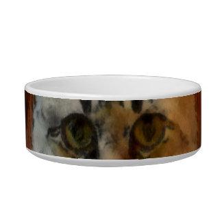 Cat Pet bowes Bowl
