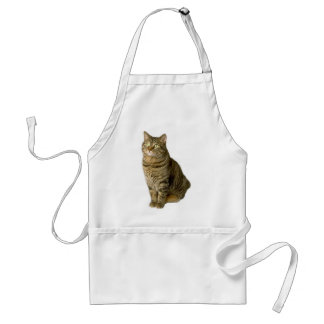 Cat Pet lover animal special friend  kitten Adult Apron