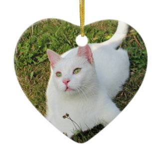 Cat Photo Heart Ornament Two Sided Animal Lover ornament