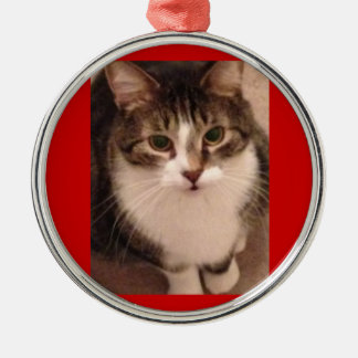 Cat Photo Christmas Tree Ornament