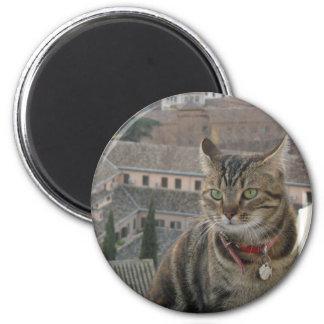 Cat Photo Standard, 5.7 Cm Round Magnet