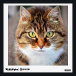 """Cat Photo Wall Sticker<br><div class=""""desc"""">Cute cat photo. Great gifts for cat lovers.</div>"""