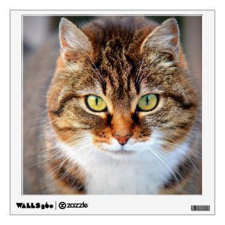 Cat Photo Wall Sticker