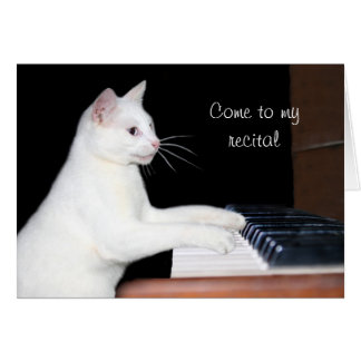 Cat piano recital greeting card