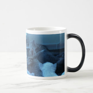 Cat Picture Coffee-Tea Cup