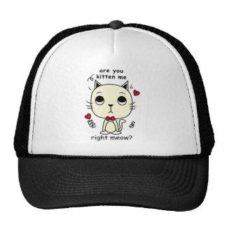 cat picture look trucker hat