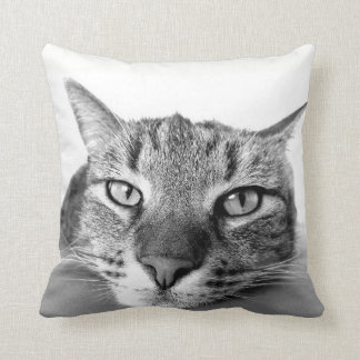 Cat pillow - Front and back.