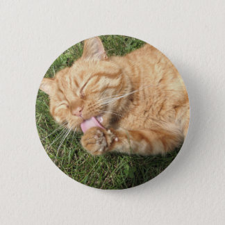 cat pinback button