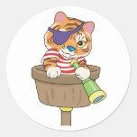 Cat Pirate Stickers