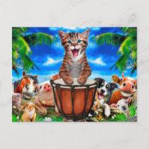 Cat playing drum - farm animals postcard