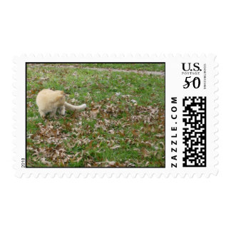 Cat Playing in the Leaves Postage