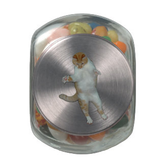 Cat playing Jelly Belly Glass Jar