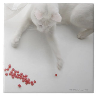 Cat playing with heart shaped candy ceramic tile