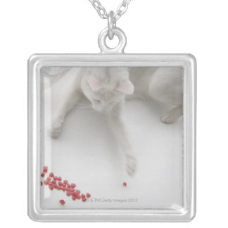 Cat playing with heart shaped candy silver plated necklace