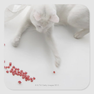 Cat playing with heart shaped candy square sticker