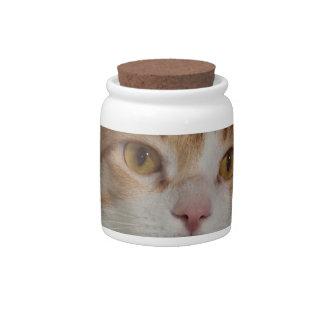 Cat Portrait Candy Jars
