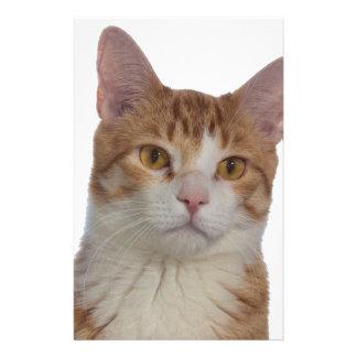 Cat Portrait Stationery