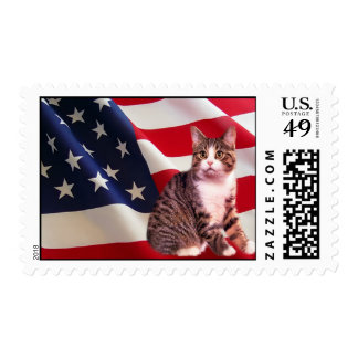 Cat Postage All American