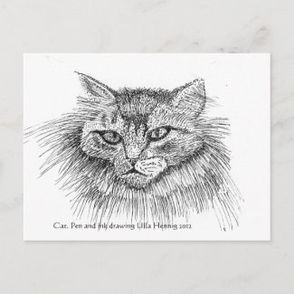 Cat Postcard postcard