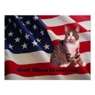 Cat Poster All American