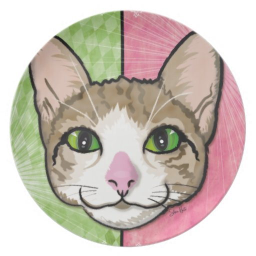 Cat Power Illustration Party Plates