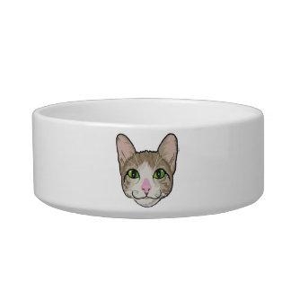 Cat Power pet bowl