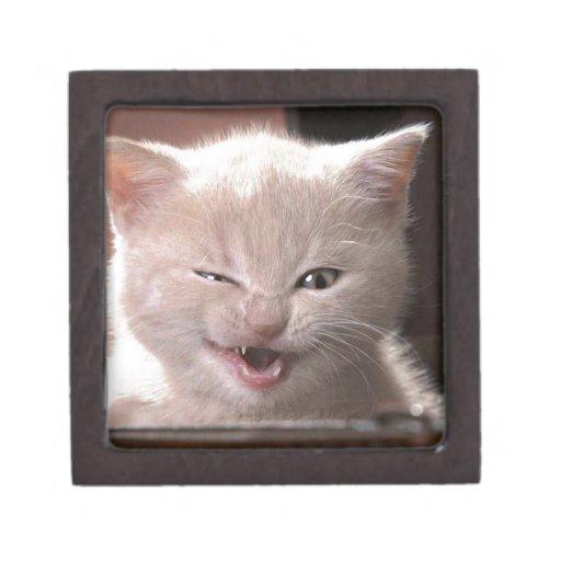 Cat Premium Keepsake Boxes