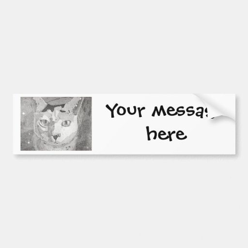 Cat Print Bumper Sticker