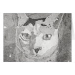 Cat Print Stationery Note Card