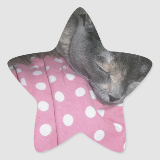 Cat products star sticker