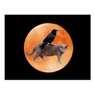 Cat Raven Moon Postcard