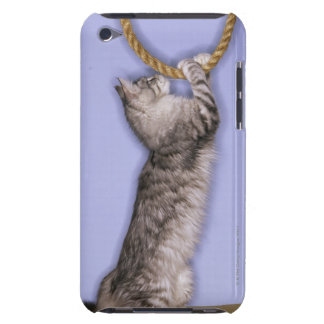 Cat reaching for rope iPod touch cases