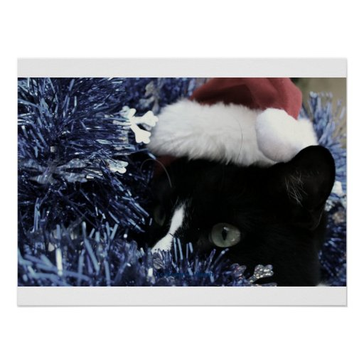 Cat ready to pounce behind blue tinsel, faded tint poster
