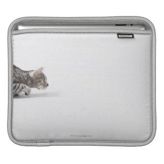 Cat ready to pounce iPad sleeves