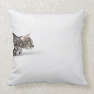 Cat ready to pounce throw pillow