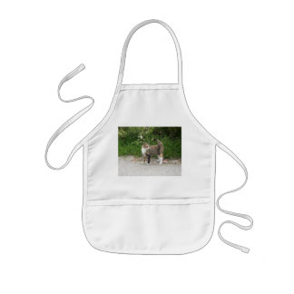 Cat  'Red' is angry Kids' Apron