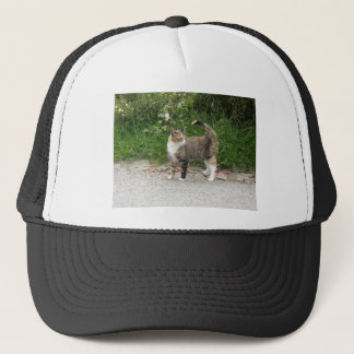 Cat  'Red' is angry Trucker Hat