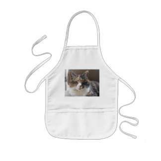 Cat 'Red' portrait Kids' Apron