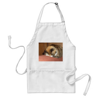 Cat 'Red' sleeping on the cough Adult Apron