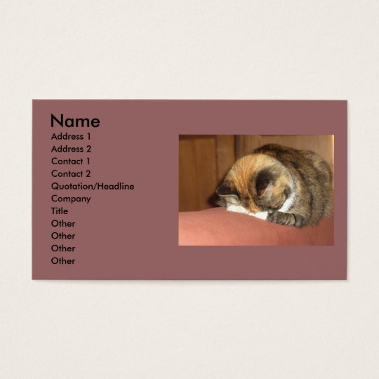 Cat 'Red' sleeping on the cough Business Card