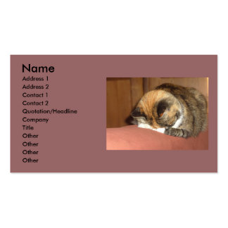 Cat 'Red' sleeping on the cough Double-Sided Standard Business Cards (Pack Of 100)