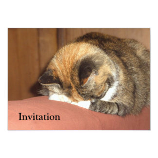 Cat 'Red' sleeping on the cough 5x7 Paper Invitation Card